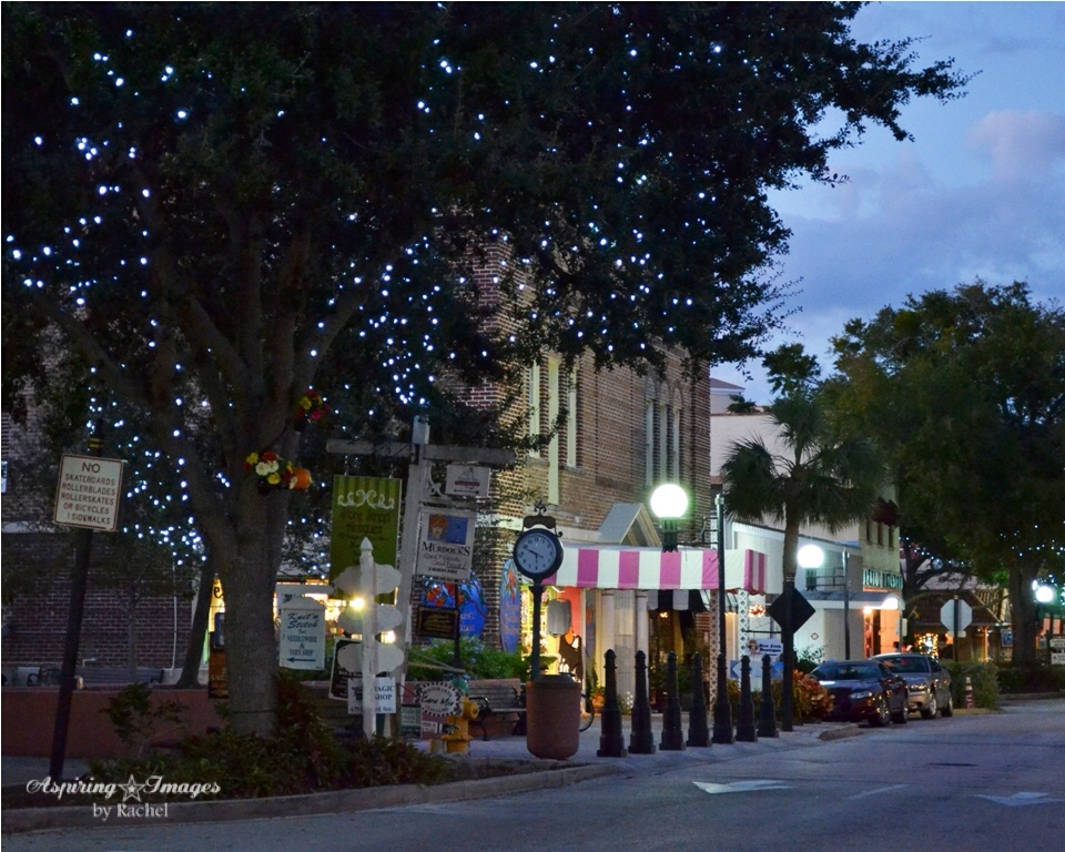 2010-11-14_Cocoa_Village-15-web