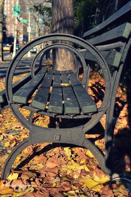 2010_Dec_NYC_Bench-web