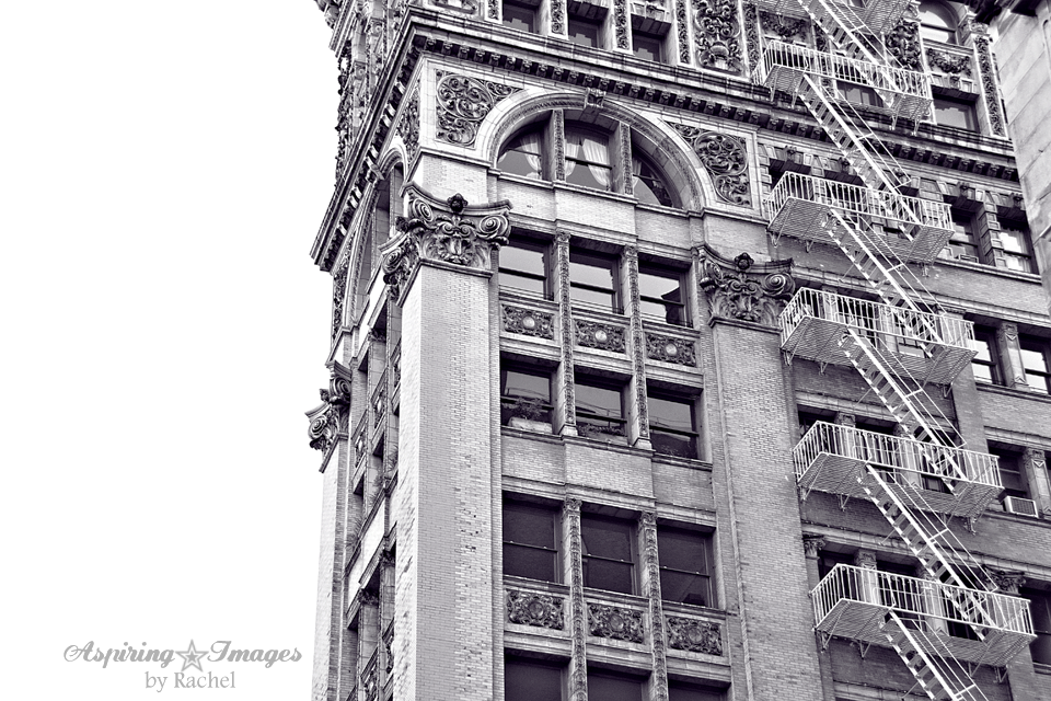 NYC Historical Bldg Details by Aspiring Images by Rachel