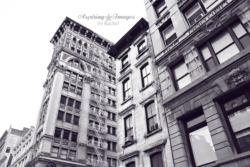 NYC Historical Buildings Details by Aspiring Images by Rachel