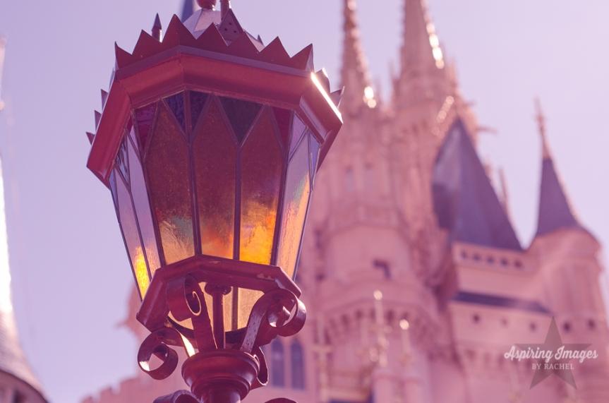 AspiringImagesbyRachel-WaltDisneyWorld-MagicKingdom-Castle-Pink